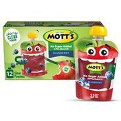 Mott's No Sugar Added Blueberry Applesauce