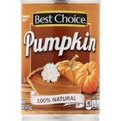 Best Choice Pumpkin