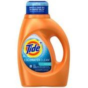 Tide Coldwater Clean Fresh Scent Liquid Laundry Detergent, 46 oz, 24 loads Laundry