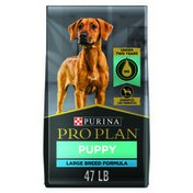 Purina Pro Plan Brand Large Breed Dry Puppy Food, Chicken & Rice Formula