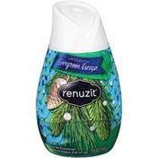 Renuzit Evergreen Escape Gel air Freshener