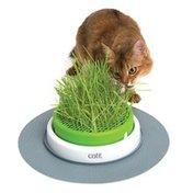 Catit 2.0 Senses Grass Planter for Cats
