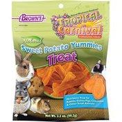 Brown's Tropical Carnival Natural Sweet Potato Yummies Treat 3.5 Oz.