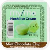 My/Mo Mochi Ice Cream, Mint Chocolate Chip