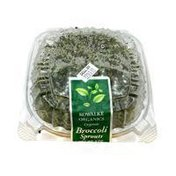 Kowalke Organics Broccoli Sprouts