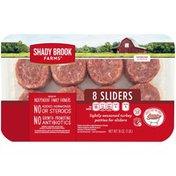 Shady Brook Farms Lightly Seasoned Patties for Sliders Turkey