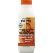 Garnier Treat Conditioner with Papaya Extract