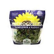 New Day Farms Microgreens Sunflower & Radish
