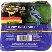 Audubon Park Wild Bird Food, Berry Treat Suet
