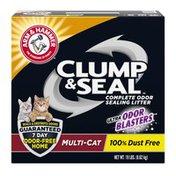 Arm & Hammer Clump & Seal Litter, Multicat  Box