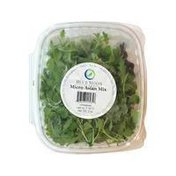 Blue Moon Acres Asian Micro Greens Mix