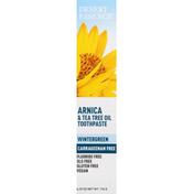 Desert Essence Toothpaste, Arnica & Tea Tree Oil, Wintergreen