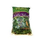 Produce Organic Kale Salad