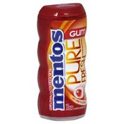Mentos Gum, Sugarfree, Cinnamon