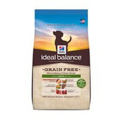 Hill's Science Diet Ideal Balance Grain Free Natural Salmon & Potato Recipe Adult Dog Food