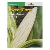 Burpee Sweet Corn Silver Queen Hybrid