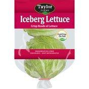 Taylor Farms Iceberg Lettuce