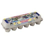 Taylor Daniels Confetti Eggs