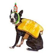 Extra-Small Halloween Avocado Costume