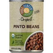 Full Circle Pinto Beans, Organic