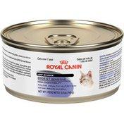Royal Canin Digest Sensitive Loaf in Sauce Wet Cat Food