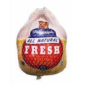 14- to 16-Pound Fresh Turkey