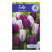 Garden State Bulb Company Tulip Violet Mixed