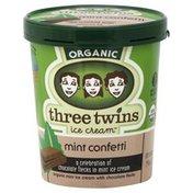 Three Twins Ice Cream, Mint Confetti
