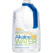Alkaline88 Water Himalayan Minerals