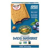 Nature's Path NP Blueberry Unfrosted Pastries