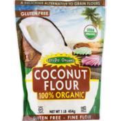 Let's Do Organic Coconut Flour, Organic