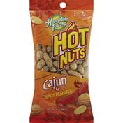 Hampton Farms Peanuts, Cajun, Spicy