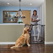 You &Me Extra Tall Arched Hands Free Dog Gate