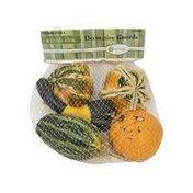 Ornamental Usa Gourds
