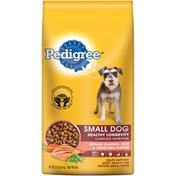 Pedigree Complete Nutrition Small Dog Healthy Longevity Grilled Salmon Rice & Vegetable Flavor Dog Food