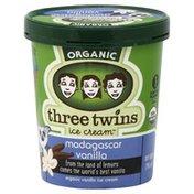 Three Twins Ice Cream, Madagascar Vanilla
