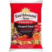 Earthbound Farm Organic BBQ Ranch Kit Chopped Salad