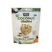 Hippie Snacks Coconut Clusters Organic Nearly Naked Crunchy Coconut With Nutrient Dense Seeds