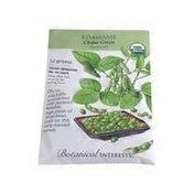 Botanical Interests Edamame Seeds