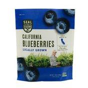 Seal the Seasons California Blueberries