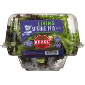 Revol Greens Spring Mix Trio