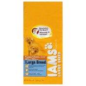 IAMS Premium Puppy Food, Large Breed