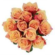 Debi Lilly Orange Roses