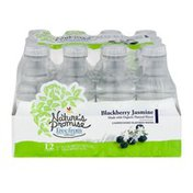 Nature's Promise Unsweetened Flavored Water Blackberry Jasmine - 12 PK