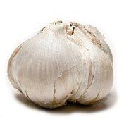 Melissa's Elephant Garlic