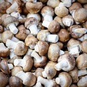 Organic Baby Bella Mushrooms
