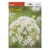Burpee Seeds, Chives, Garlic