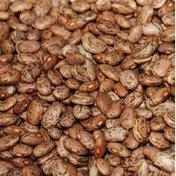 Wild Harvest Pinto Beans, Organic