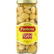 Pastene Lupini Beans