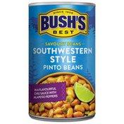 Bush's Best Southwestern Style Pinto Beans  mL